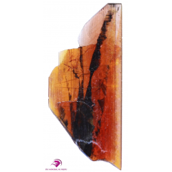 Brookite Pakistan