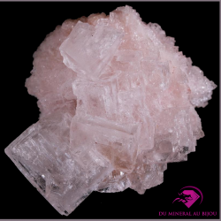 Halite rose de Californie