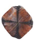 Vente minéraux d'andalousite ou Chiastolite aussi appelée pierre de croix